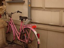 Pink Bike by Fauun