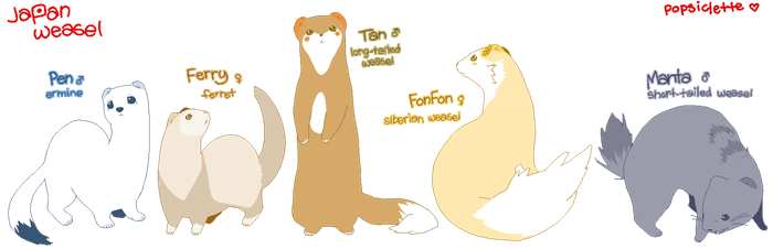 mustela party by drill-tail