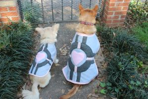 Companion Cube Canines by missfit1023