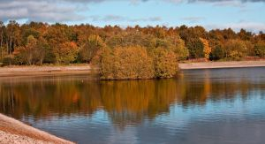 Autumnal Landscape II by DundeePhotographics