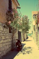 Blossoming streets by green-pease