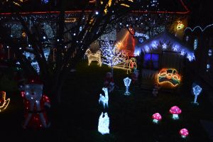 Christmas spirit house and garden decorations 2 by A1Z2E3R
