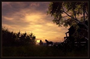 High Country Sunset by 00AngelicDevil00