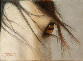 Horse in Pastels by Julieolsen