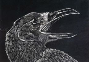 Crow Claybord by The-GoblinQueen