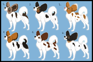 Papillon Adoptables - 5 left - by Kenisya