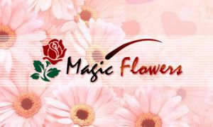 magic flowers by ijographicz