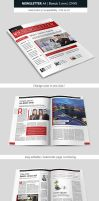 Creative Indesign Newsletter Template Design by renefranceschi
