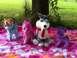 Now Benson Joins The Picnic! by BeautifulHusky