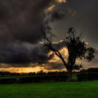 ...just before it gets dark... by photo-earth
