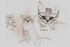 animal sketches by beyourpet
