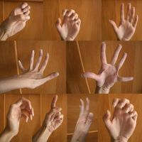 Hand 6 by ShiStock
