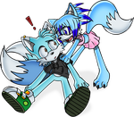Blue Foxes by Lord-Kiyo