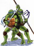 TMNT: Don and Leo by loolaa