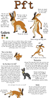 Pft -Final Ref- by Songdog-StrayFang