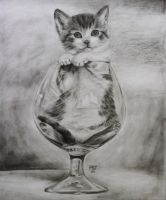 cat ^^ drawing pencil by vuthu93
