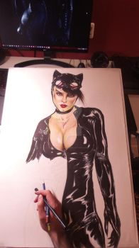 Catwoman WIP 2 by ChrisStoner