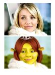 cameron diaz morphed by casual-funky-monkey