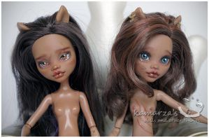 Two Clawdeen repaint commission by kamarza