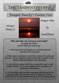 Issue 5- Feature Vote Week 12 by The-Undiscovered