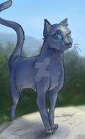 Bluestar by LittleArtistRen-Ren