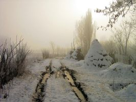 Winter2 by d7baly