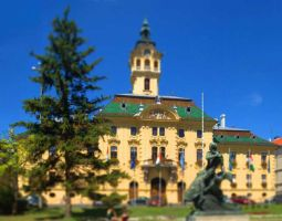 Szeged Town Hall by bhorwat
