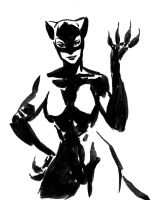 CATWOMAN SKETCH by aaronminier