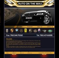 Rizwan's Car Website by xtrememediaworx