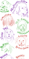 My Favorite Dogs by JasminePetals