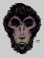 Monkey-face by hamex