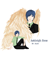 Ashleigh Rees :: Mr. Angel by FallingThroughGlass