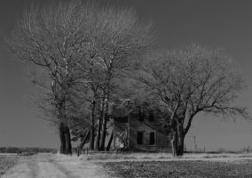 Long Forgotten by geiersphotos