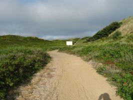 Sylt 07-21-2013_001 by Travail-de-lame