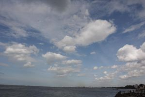 ancol by tonykartun