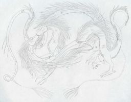 Two Chinese Dragons by DrMario64