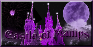 Castle purple hue banner with text by WDWParksGal-Stock