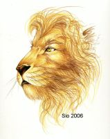 Aslan by SioUte