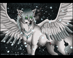 . Middle of snow . by ThaNicky