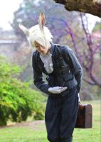 White Rabbit Cosplay by TheSinisterLove