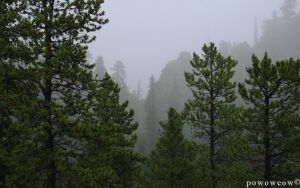 Foggy Mountains 1 by powowcow