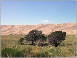 The Great Sand Dunes by Savina by colorado