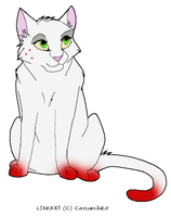 WIC Single Cat adopt by Tsuki-93