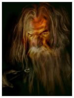 IAN MCKELLEN GANDALF THE GREY PORTRAIT by BUMCHEEKS2