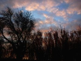 Goodbye Blue Sky by MCR-is-Red