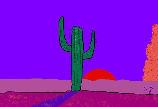 CACTUS SUNSET No.1 by Zayd-Depaor