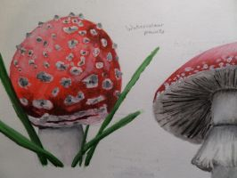 Red Watercolour Mushrooms by maja135able