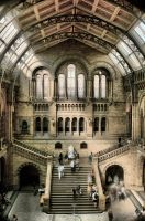 Natural History Museum HDR 1 by james-cramp-art