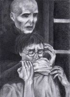 Dark Lord and Harry Potter by Leona-Norten