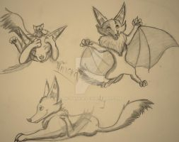 Hinora- blood-bat cub by Aki-Hanna